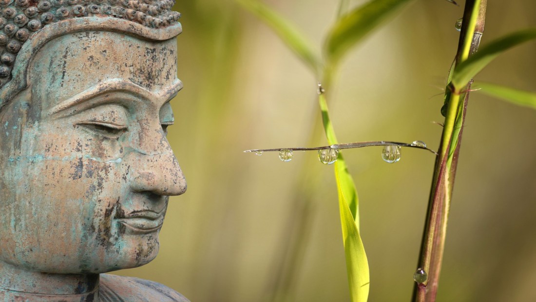 ayurveda-yoga-tnequilibrium-tres-doshas