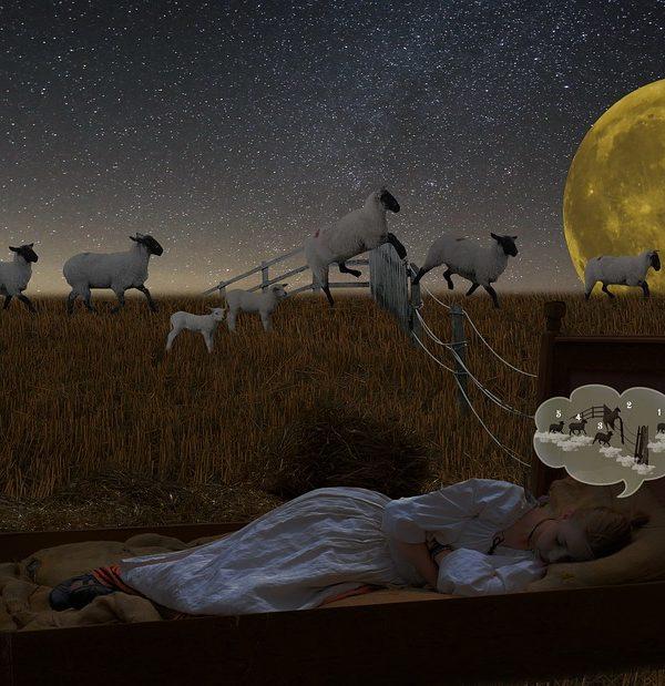 ayurveda-yoga-tnequilibrium-yoga-nidra