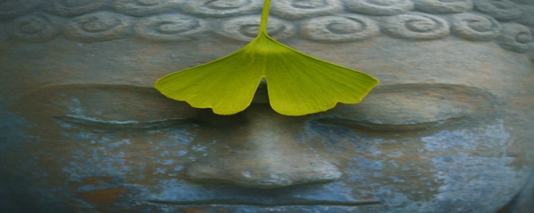 ayurveda-yoga-tnequilibrium-buddha