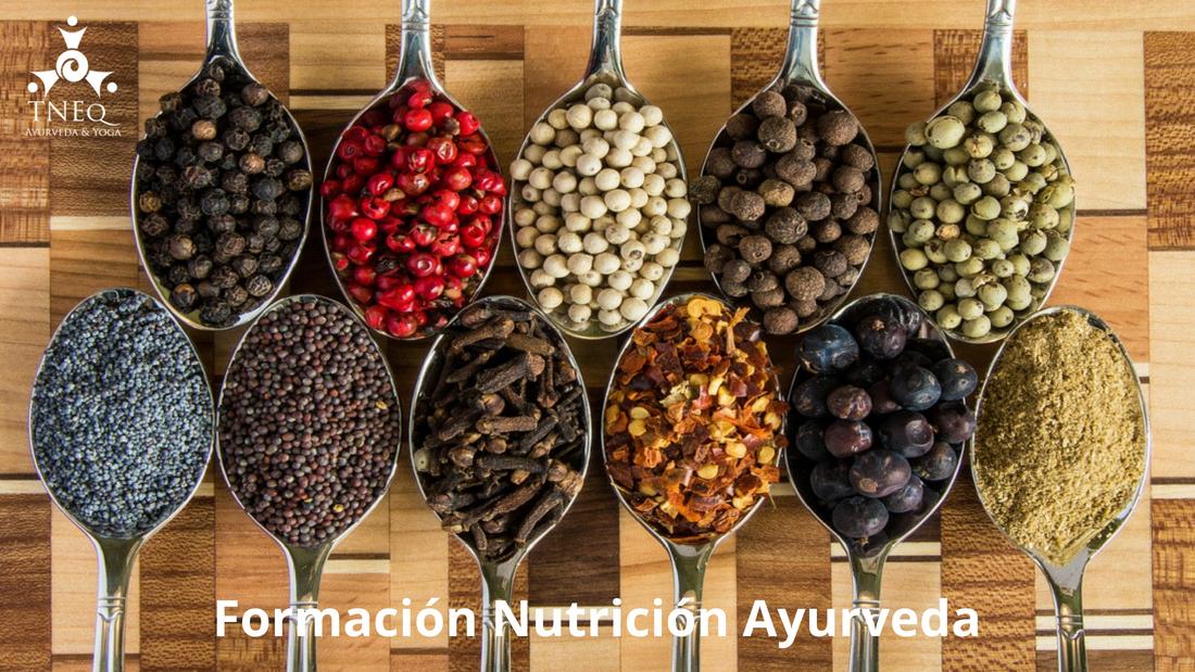 ayurveda-yoga-tnequilibrium-curso-nutricion-ayurveda-home