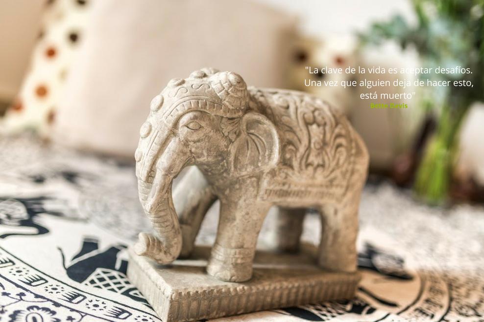 ayurveda-yoga-tnequilibrium-elefante-frase1